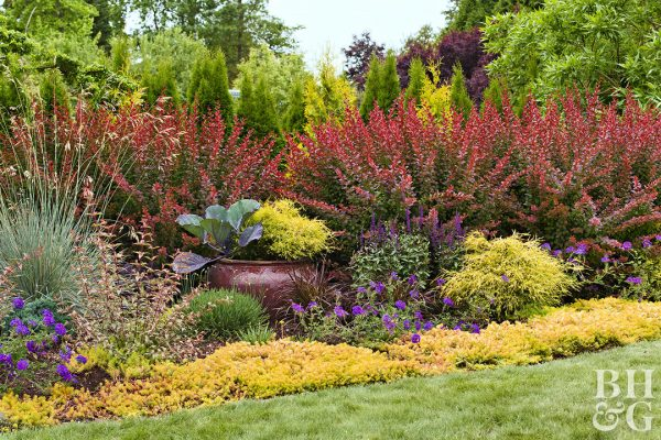 Search Easy Landscaping Ideasbetter Homes   Gardens Medium
