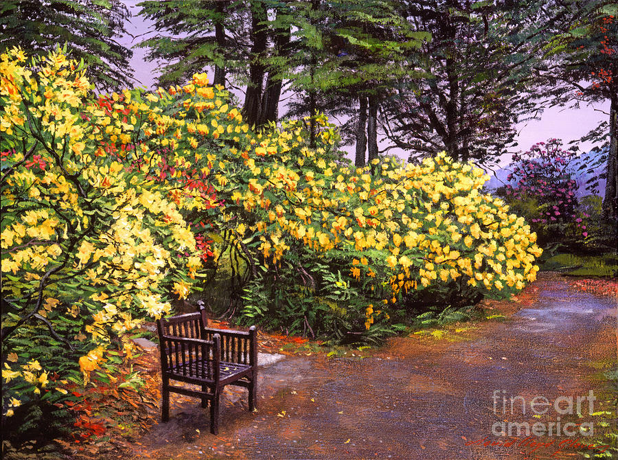 search flourishing garden painting by david lloyd glover