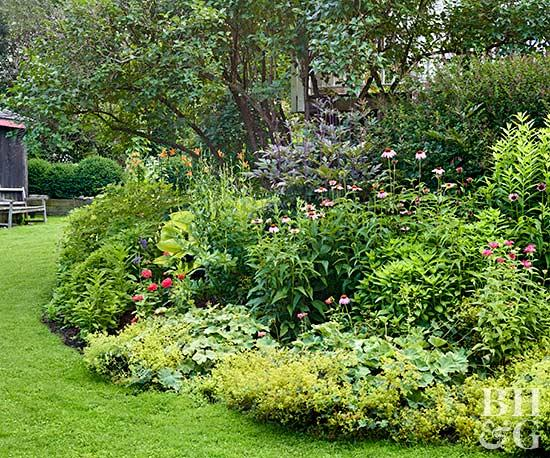 Search How To Build A Flower Bedbetter Homes   Gardens Medium