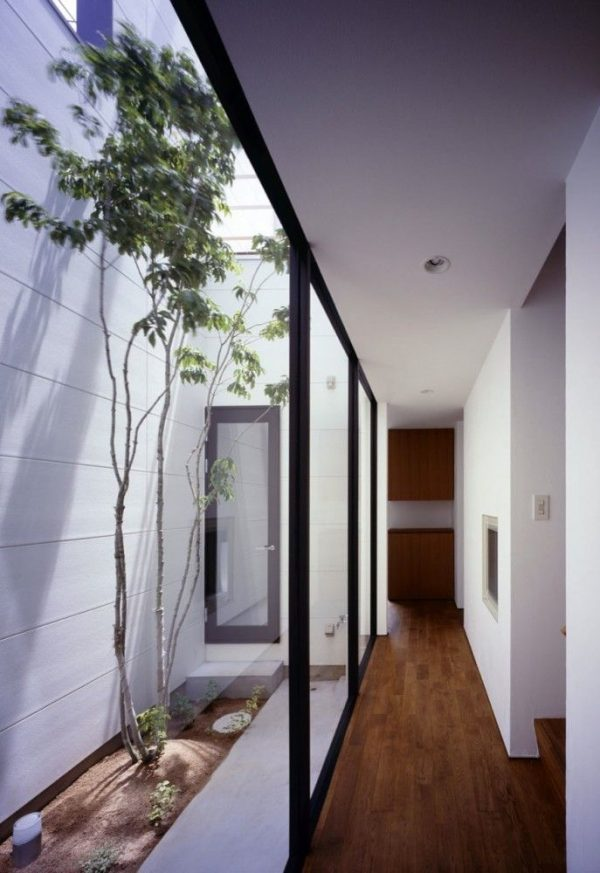Search How To Maximise Light In Narrow Block Homes Destination Medium