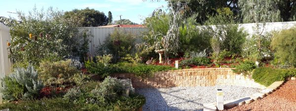 Simply Native Garden Guide Archives Australian Native Nursery Medium