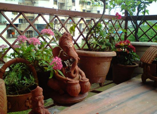 Tips Balcony Gardens In India Google Searchgardening Medium