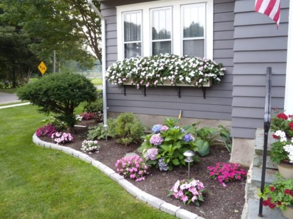 Tips Great Design Flower Bed Ideas Featuring Rectangle Shape Medium