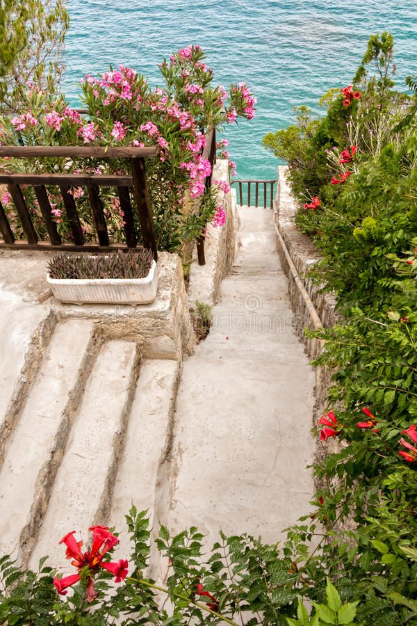 Top Walkpath Through A Flourishing Seaside Garden Stock Photo Medium