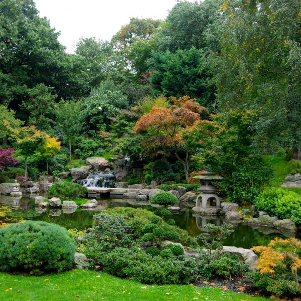 We Share How To Plant A Japanese Garden In A Small Space Good Medium