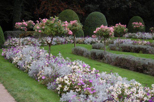We Share More On Chenonceau  Gardeninacity Medium