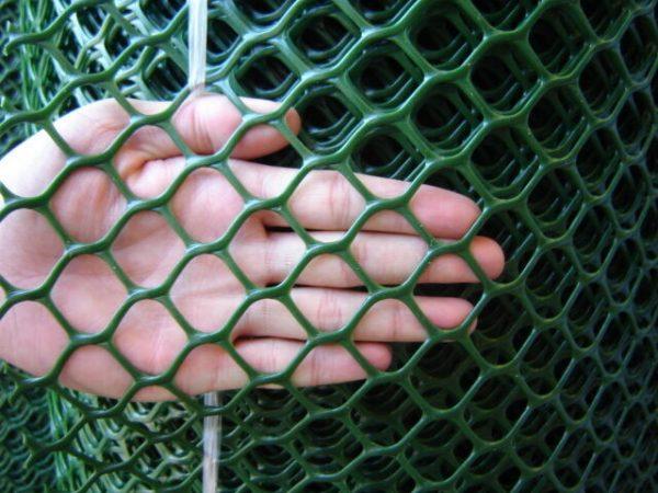 We Share Rigid Green Plastic Garden Fencing Mesh Hexagonal Plastic Medium