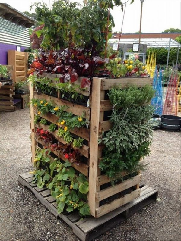 We Share Upcycled Pallet Planter Ideas  Wood Pallet Ideas Medium