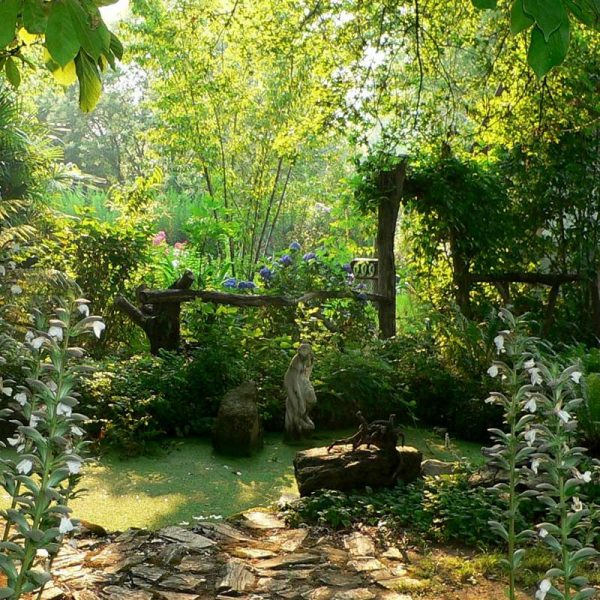 We Share Witch Herb Gardens Google Searchmidwife Novel Medium