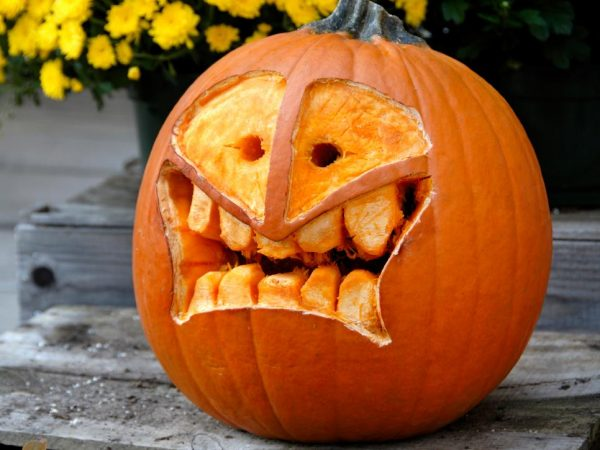 Bore 75 Pumpkin Carving Ideas For Halloween Inspirationseekcom Medium